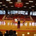 Volley for a Cure 2014